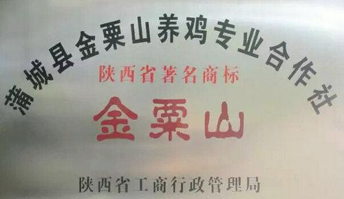 陕西蒲城金粟山养鸡专业合作社理事长王向东:执着不悔写人生